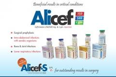 alicef